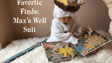 Photo of Favorite Finds – Where the Wild Things Are Max Costume