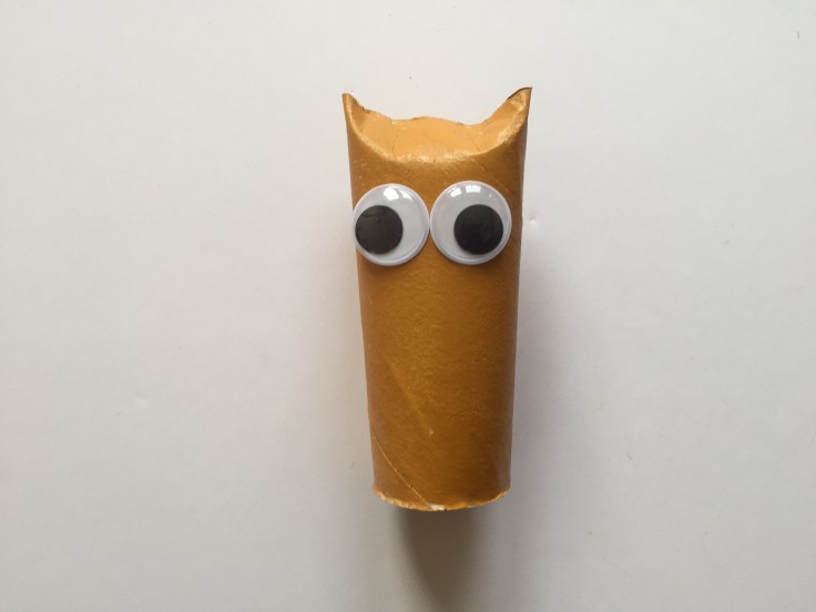 Toilet Paper Roll Owls - Description of step 3 of this tutorial - Fix the eyes of the owl