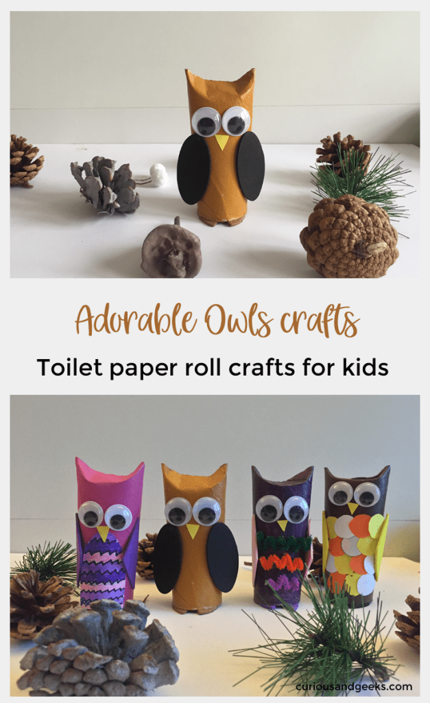 Toilet Paper roll owls pin - Toilet paper roll owls - an Owlsome craft for kids