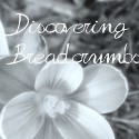 discoveringbreadcrumbs.com