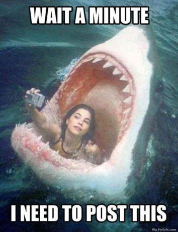 animaatjes-selfie-humor-0472309