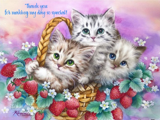 Thank You strawberry basket kittens