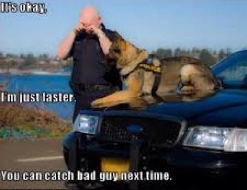 police-dog1