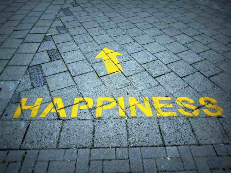 define your happiness
