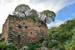 monemvasia trees ruins
