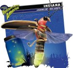 Indiana - Indiana-Fireflies-1.jpeg