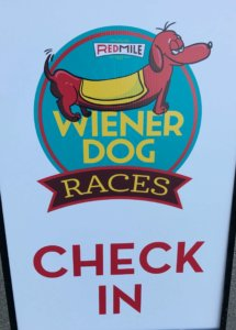 Kentucky - Wiener Dog Race Check-In.jpg