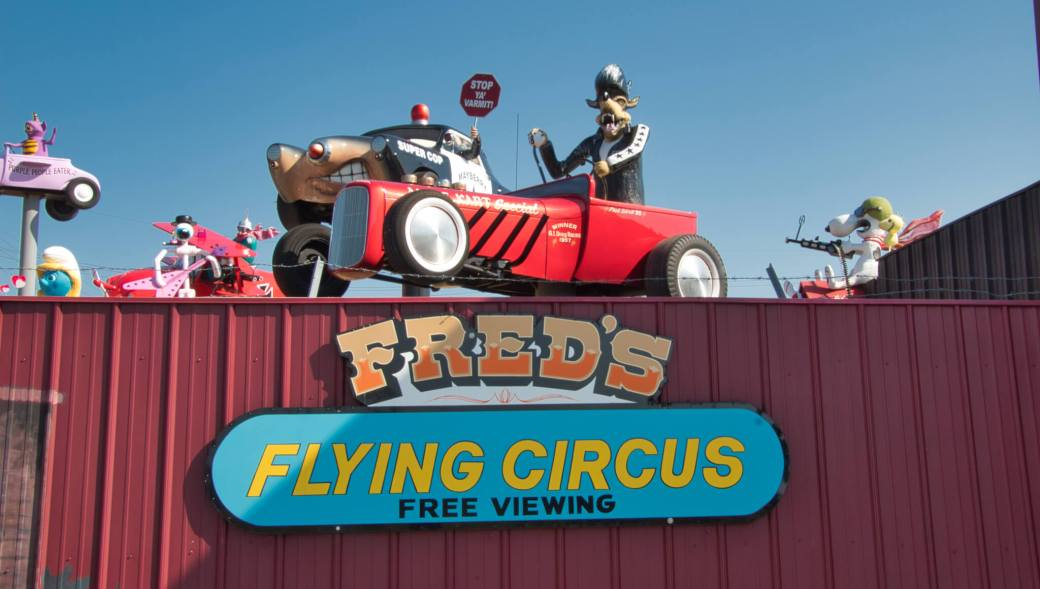 Curious Craig - Freds-Flying-Circus.jpeg