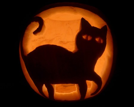 Black cat with curly tail pumpkin design