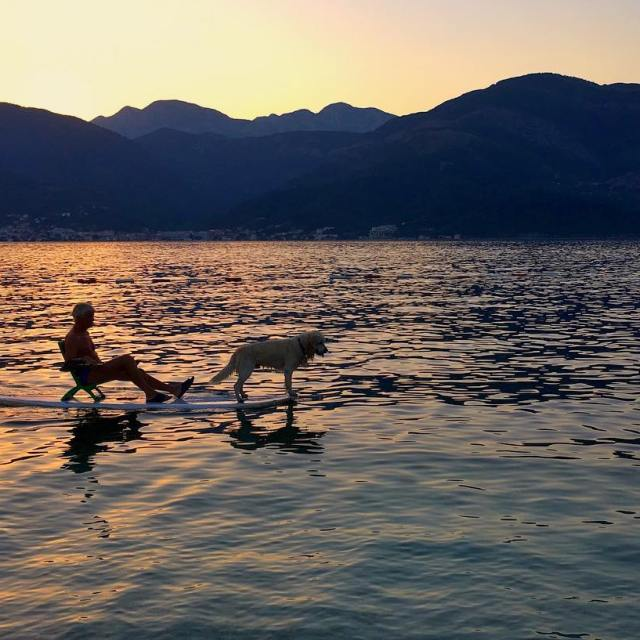 This paddle boarder his dog and the sunset AfternoonDreams Sunsethellip
