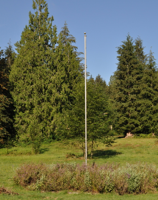 Flagpole with overgrown herb border.