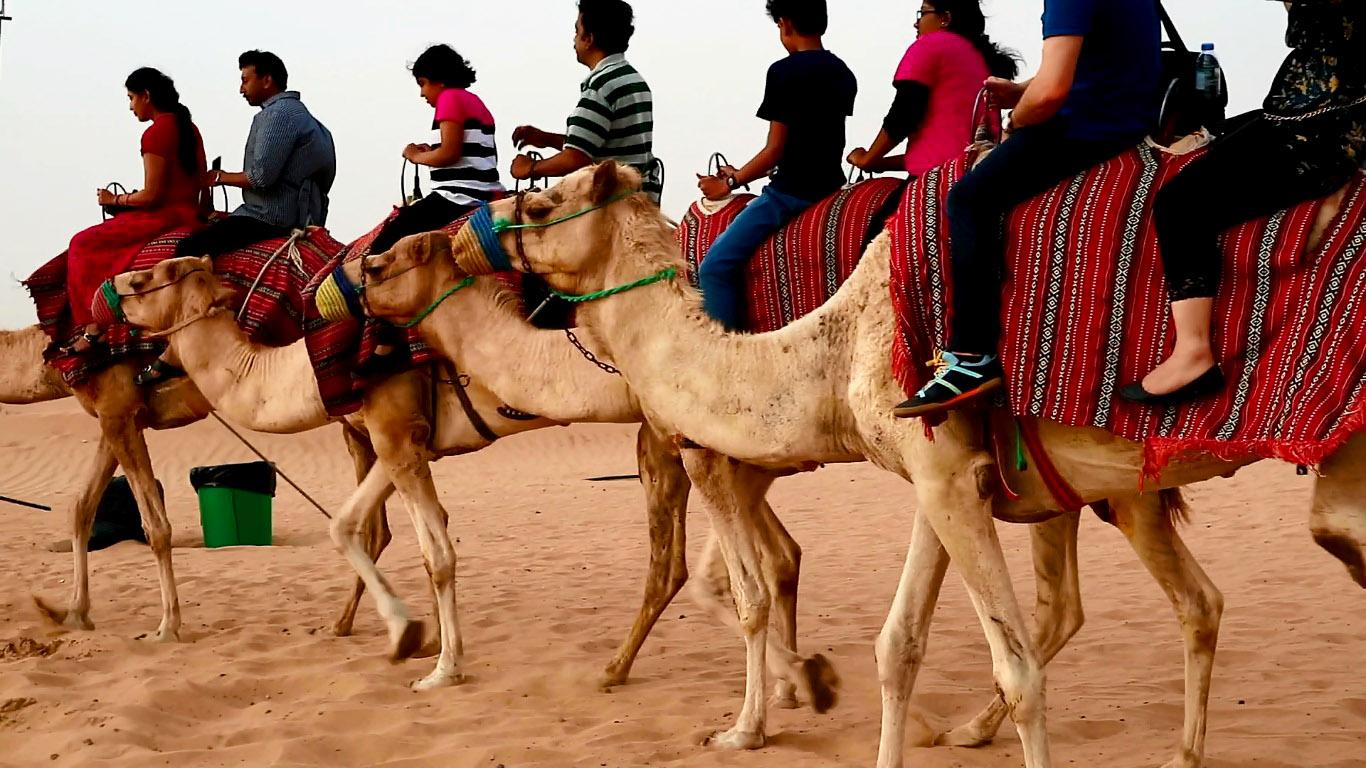 Desert Safari Dubai At The Cheapest Possible Price 4 Min Read