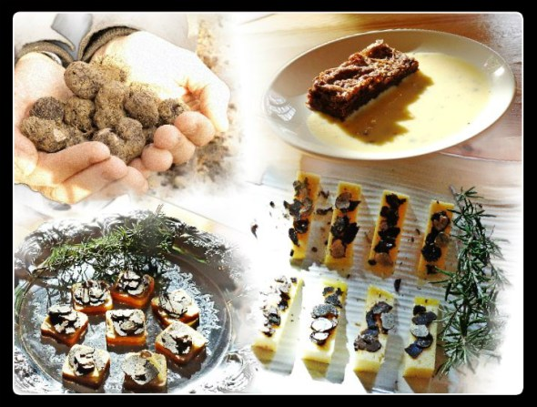 truffle collage
