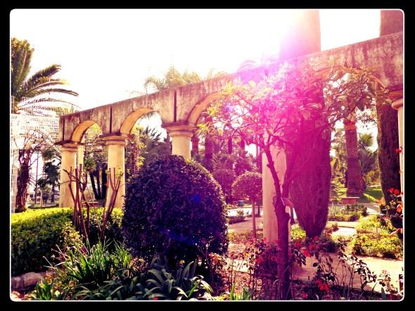 Parc Phoenix, Nice, France