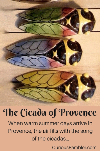 The Cicada (Cigale) of Provence