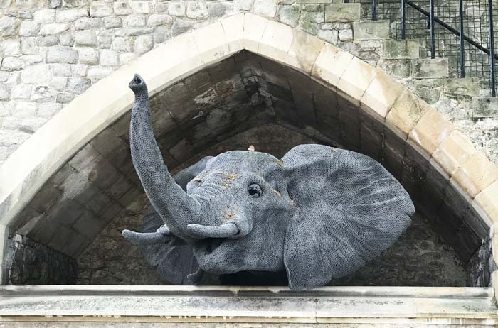 elephant in Tower 02
