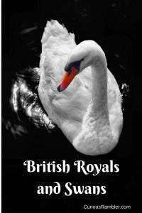 British Royals and Swans