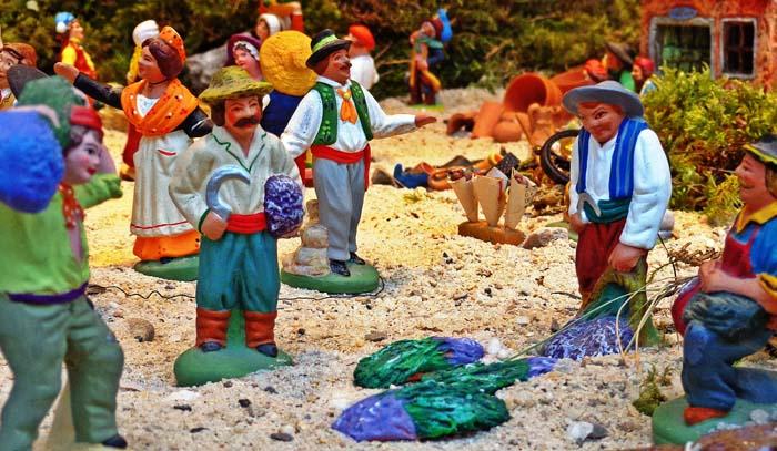 lavander harvest