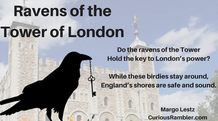 Ravens of the Tower of London