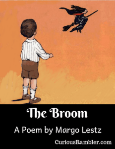 The Broom image