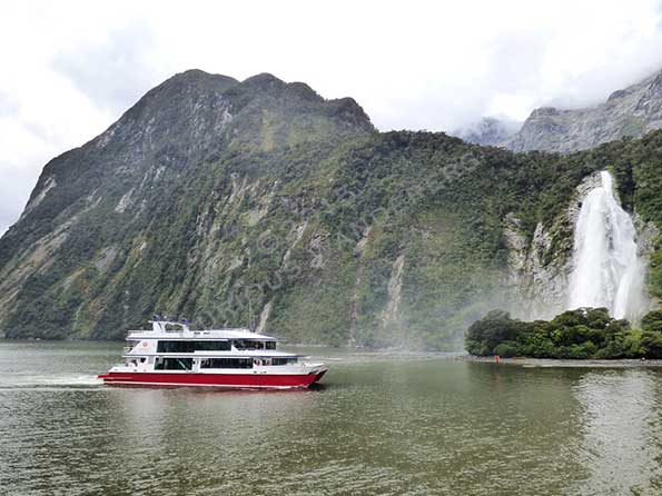 Cruising around the Milford Sound
