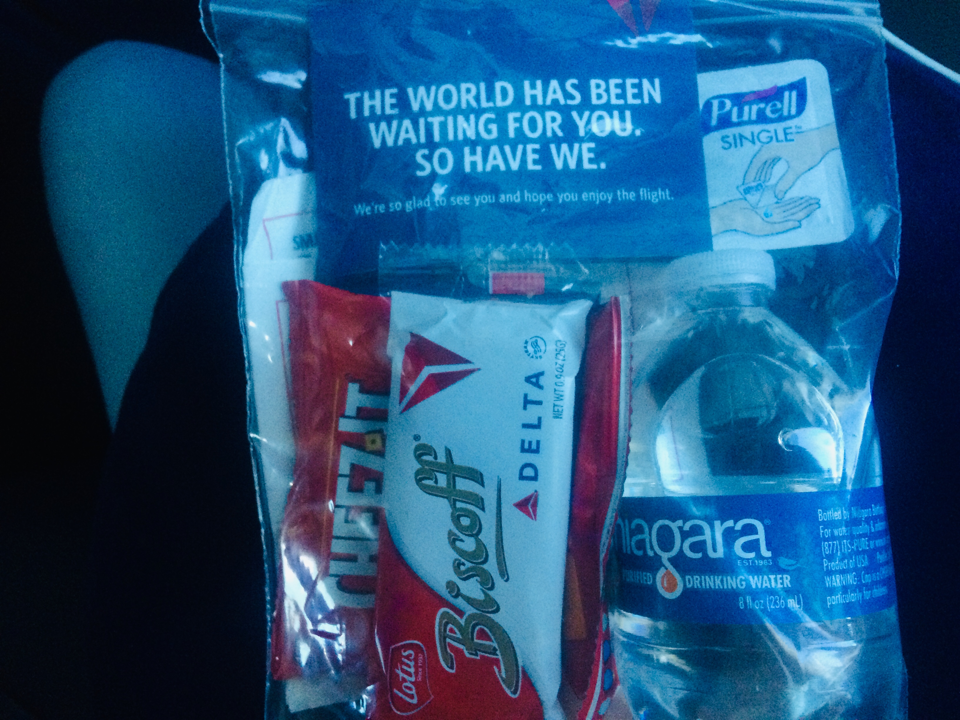 Delta Airlines provides packages snacks in plastic bags and provides hand sanitizer to slow the spread of germs.
