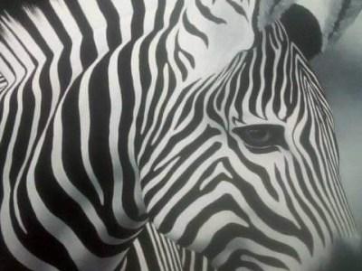 Tingatinga artwork, zebra