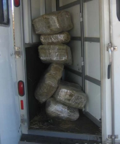 Ask your feed store about compressed bales of hay- small bales make it easier to pack enough hay for a long journey