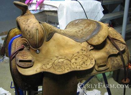 western_saddle_longhorn