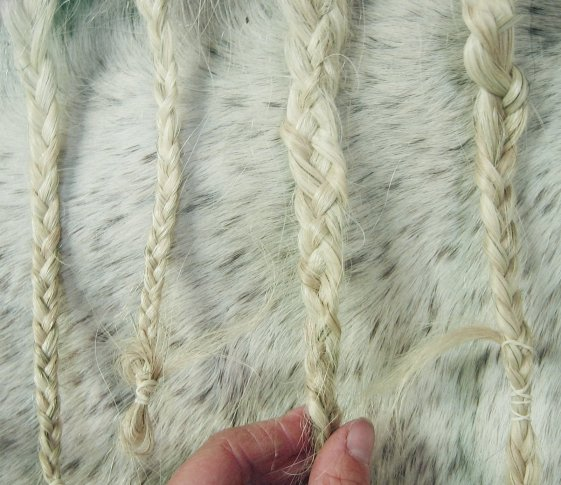 A four strand braid in between traditional braids on a horse's mane
