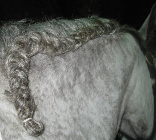 Finish a running braid with a simple plait, band, and tuck.