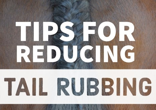 tips for reducing tail rubbing