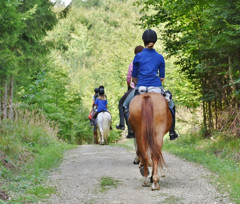 Keep your new horse at a barn with other riders helps create opportunities to learn about horsemanship in a safe environment and builds friendships with other riders.