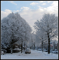 My neighourhood in snow