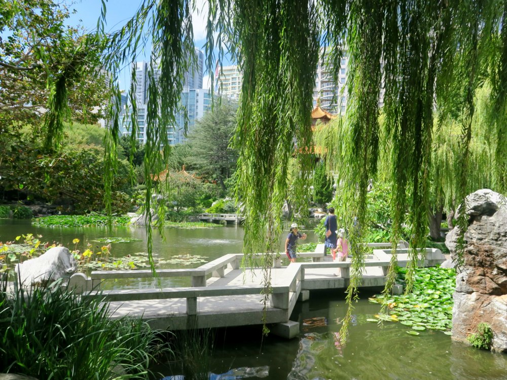 Chinese Garden Sydney - a tranquil oasis in Darling Harbour