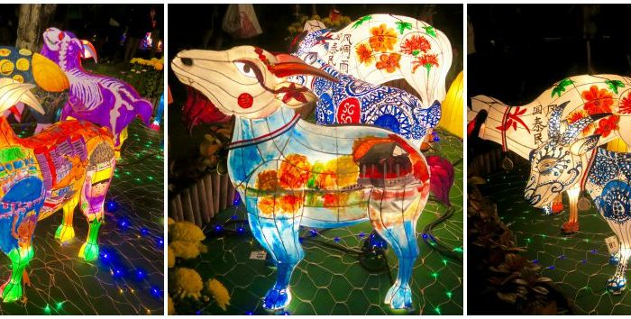 Garden By The Bay Mid Autumn Festival 2014 gardensthe bay archives - curly traveller