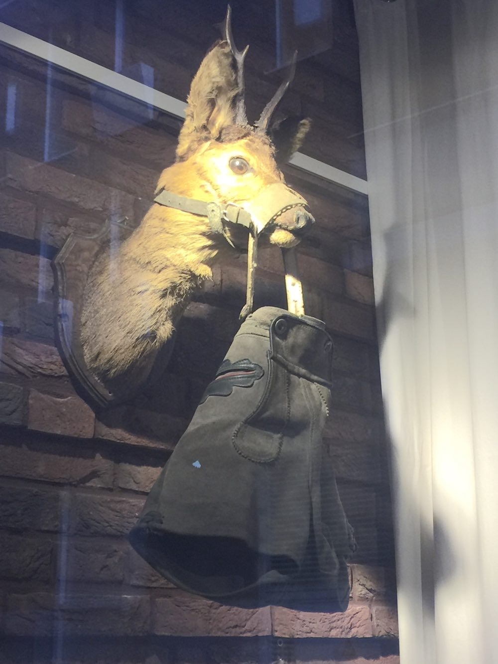 Deer head with lederhosen at Stadskunstkamer Haarlem |curlytraveller.com