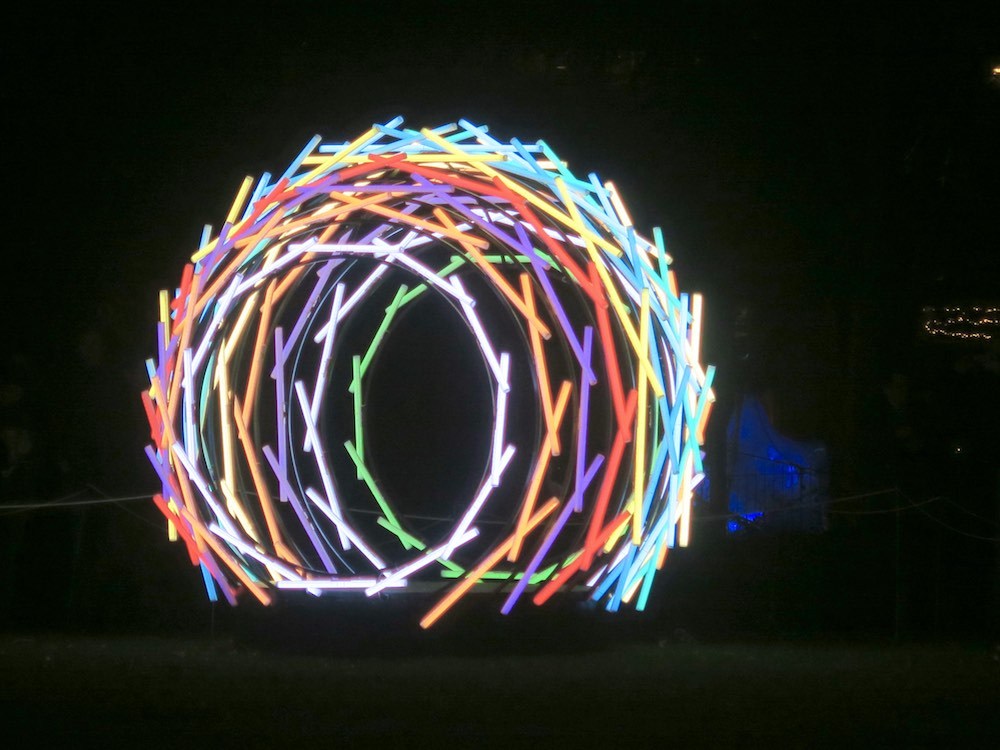 Nest by Vikas Patil and Santos Guhjar at Amsterdam Light Festival |curlytraveller.com