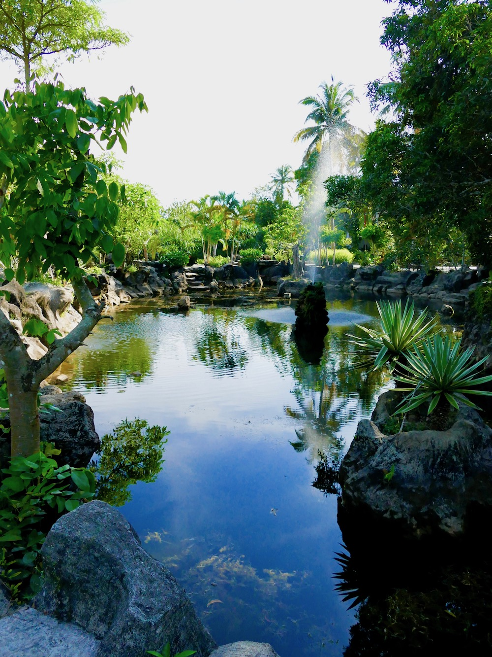 pond with fountain in Suoi Tranh park |curlytraveller.com