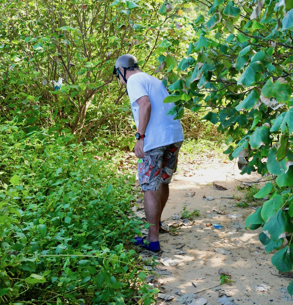 Man makes his way through the bushes to the beach |curlytraveller.com