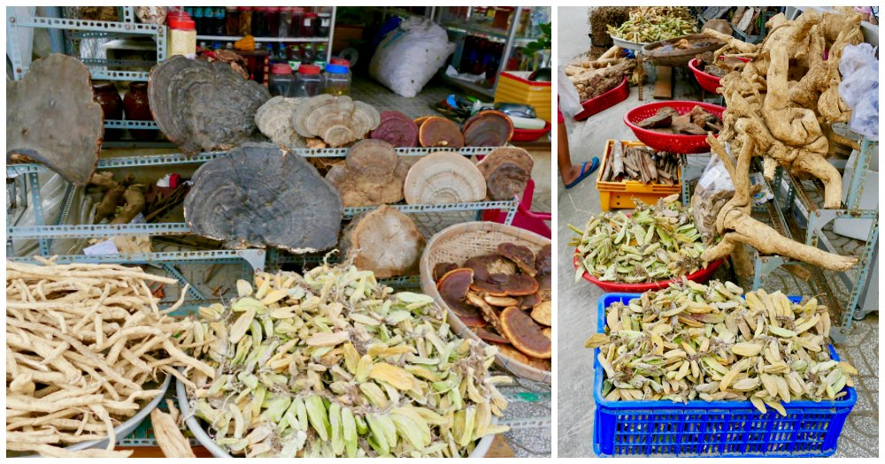 Mushrooms, roots and exotic ingredients at Duong Dong market |curlytraveller.com