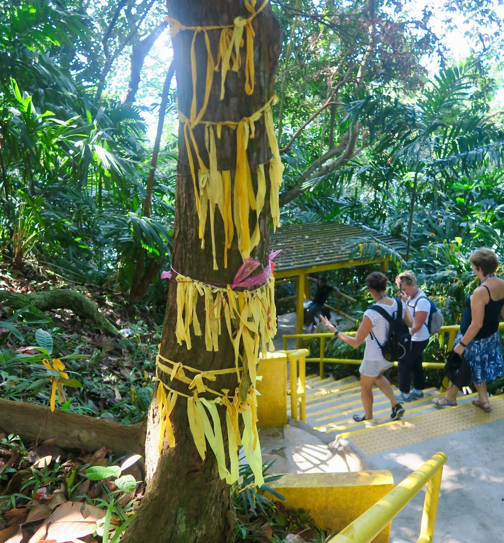 Tree with yellow ribbons at Kusu Island |curlytraveller.com
