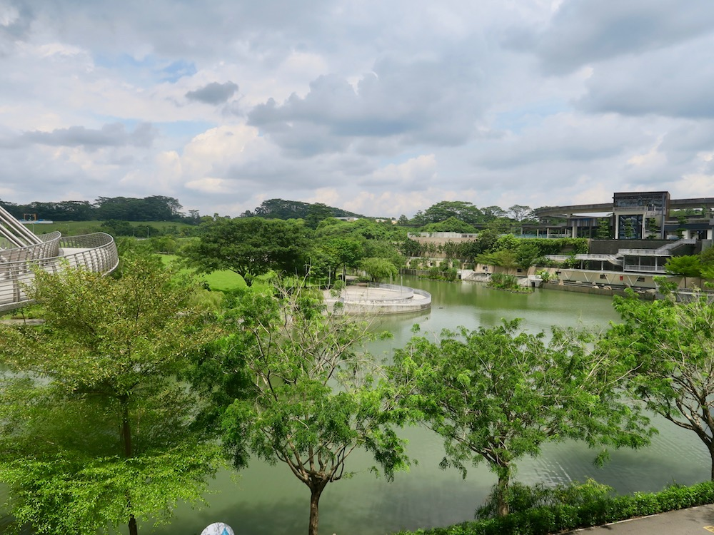 Green and spacious Punggol |curlytraveller.com