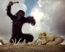 Kubrick 2001: A Space Odyssey (1968)