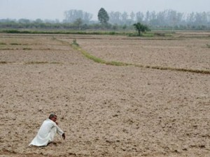 Nearly 400 farmers in Maharashtra committed suicide in January this year, says report