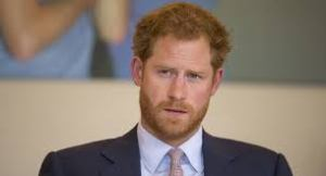 Prince Harry Named President of African Conservation Group