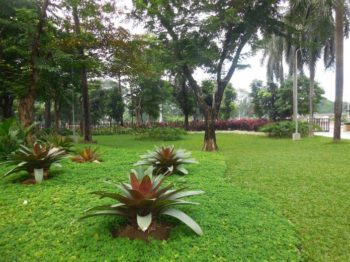 Mehan_Garden