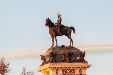 Gaviota en Madrid 2 - Paseando por el Parque del Retiro