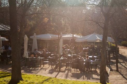 Un café al sol invernal - Paseando por el Parque del Retiro por Navidad
