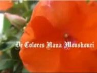DeColores en espagnol par Nana Mouskouri